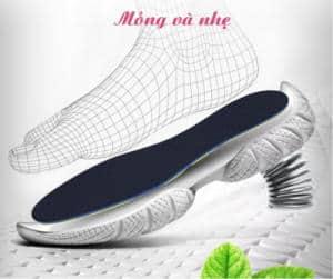 lót giày cao cấp pedag 4